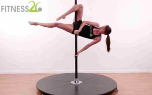 Animal Themed Pole Exercises
