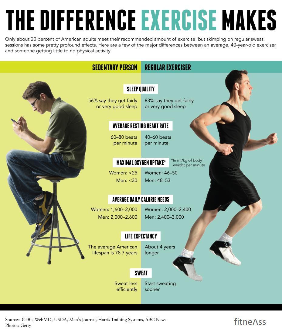 Regular Exerciser vs. Sedentary Person